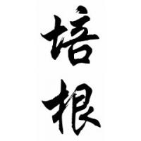 Bacon Family Name Chinese Calligraphy Painting