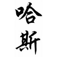Haas Family Name Chinese Calligraphy Painting