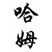 Hamm Family Name Chinese Calligraphy Scroll