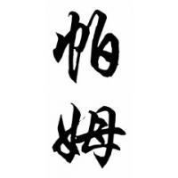 Pam Chinese Calligraphy Name Painting